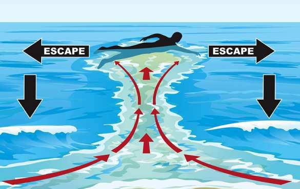 Dangers in surfing
